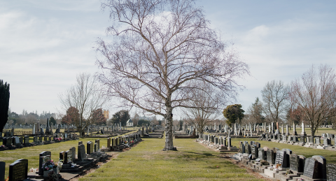 Cemetery Information